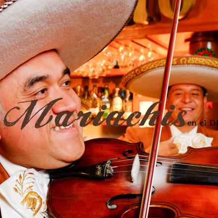 mariachis para bodas