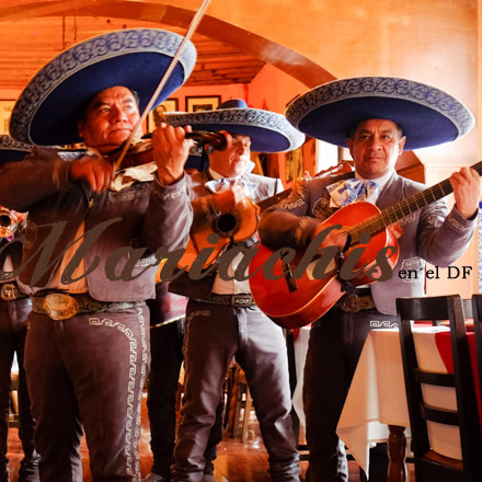 mariachis para serenatas